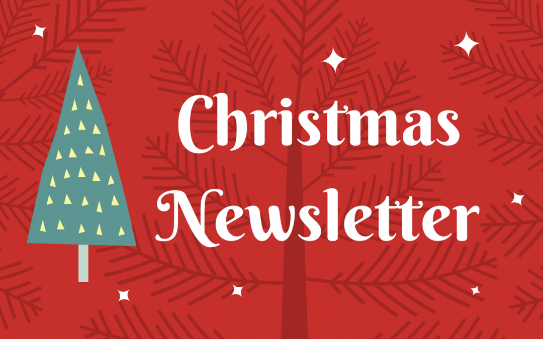 Christmas Newsletter 18th December 2020